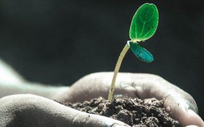 Personal Leadership: How to Regain a Sense of Purpose, I/II